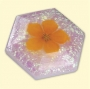 Molde Duplo (3D) Diamante